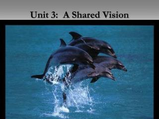 Unit 3:  A Shared Vision