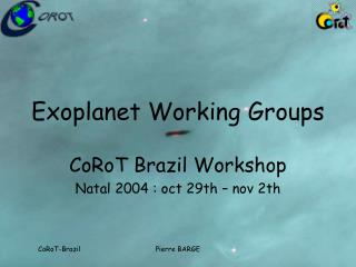 Exoplanet Working Groups