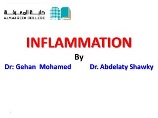 INFLAMMATION By Dr :  Gehan M ohamed           Dr.  Abdelaty Shawky