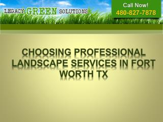 Choosing professional Landscape Services in Fort Worth TX