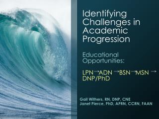 Identifying Challenges in Academic Progression Educational Opportunities:  LPN   ADN    BSN   MSN     DNP/PhD
