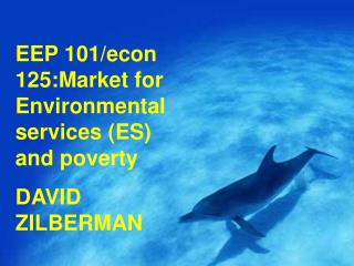 EEP 101/econ 125:Market for Environmental services (ES) and poverty DAVID ZILBERMAN