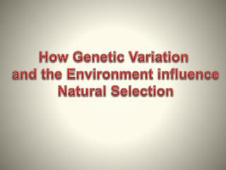 How Genetic Variation  and the Environment influence  Natural Selection
