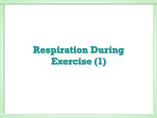 Respiration During Exercise (1)