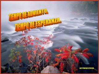 TIEMPO DE ADVIENTO,