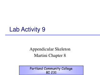 Lab 10 Appendicular Skeleton and Articulations Lower Extremity Anatomy  Movement