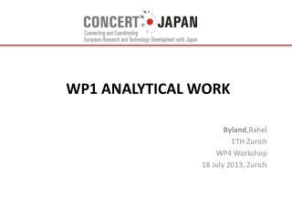 WP1 Analytical Work