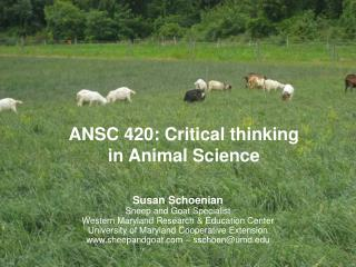 ANSC 420: Critical thinking  in Animal Science