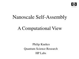 Nanoscale Self-Assembly A Computational View