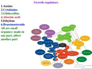 Growth regulators Auxins Cytokinins Gibberellins Abscisic acid Ethylene Brassinosteroids All are small  organics: made i
