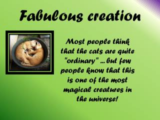 Fabulous creation