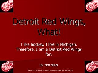 Detroit Red Wings, What!
