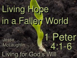 Living Hope  in a Fallen World