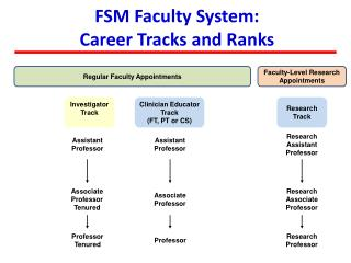 FSM Faculty System: Career Tracks and Ranks