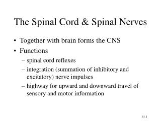The Spinal Cord & Spinal Nerves