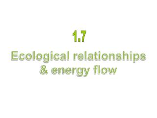 Ecological relationships & energy flow