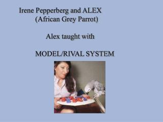 Irene Pepperberg and ALEX (African Grey Parrot)  Alex taught with MODEL/RIVAL SYSTEM