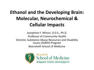 Ethanol and the Developing Brain:  Molecular,  Neurochemical  & Cellular Impacts