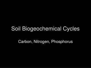 Soil Biogeochemical Cycles