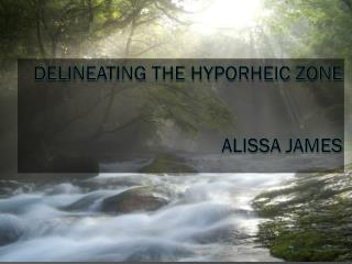 Delineating the Hyporheic Zone Alissa jameS