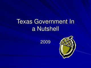Texas Government In  a Nutshell