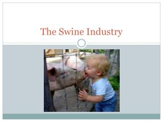 The Swine Industry