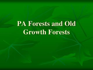 PA Forests and Old Growth Forests