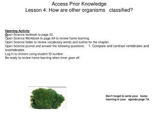 Access Prior Knowledge Lesson 4: How are other organisms 