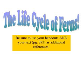 Be sure to use your handouts AND your text (pg. 393) as additional references!