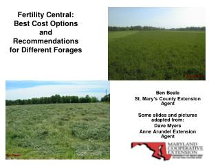 Fertility Central: Best Cost Options and Recommendations for Different Forages
