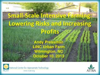 Small-Scale Intensive Farming: Lowering Risks and Increasing Profits