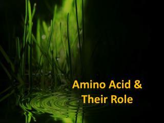 Amino Acid & Their  Role