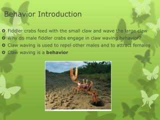 Behavior Introduction
