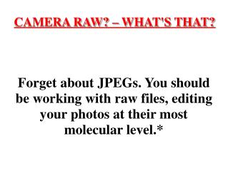 CAMERA RAW? – WHAT'S THAT?