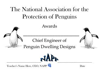 The National Association for the Protection of Penguins