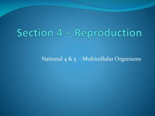 Section  4 –  Reproduction