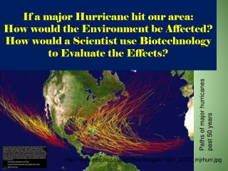 If a major Hurricane hit our area: How would the Environment be Affected? How would a Scientist use Biotechnology to Eva
