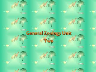 General Zoology Unit Two