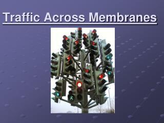 Traffic Across Membranes