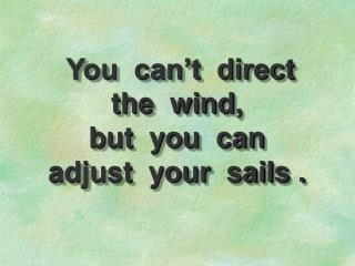 You  can't  direct              the  wind,                 but  you  can  adjust  your  sails .