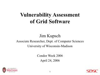 Vulnerability Assessment of Grid Software