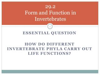 29.2 Form and Function in Invertebrates