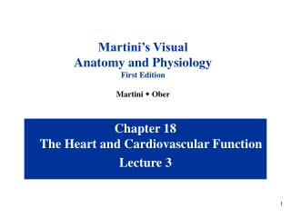 Chapter 18 The Heart and Cardiovascular Function Lecture 3