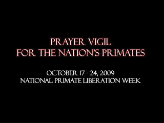 prayer  vigil  for the nation's primates  October 17 - 24, 2009 National Primate liberation week