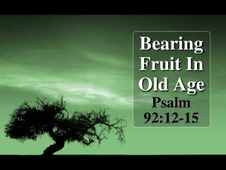 Bearing Fruit In Old Age