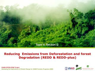 Reducing  Emissions from Deforestation and forest Degradation (REDD & REDD-plus)