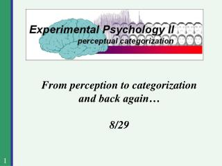 From perception to categorization and back again… 8/29