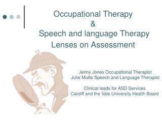 Occupational Therapy  &    Speech and language Therapy  Lenses  on Assessment