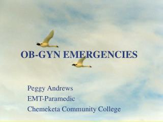 OB-GYN EMERGENCIES