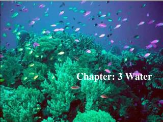 Chapter: 3 Water
